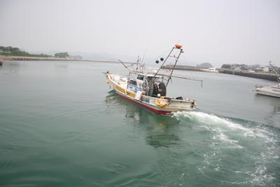 煮干いりこ 漁の風景