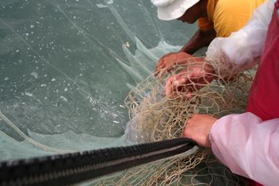 漁の風景07