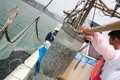 漁の風景08