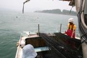 漁の風景04