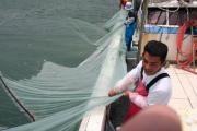 漁の風景06